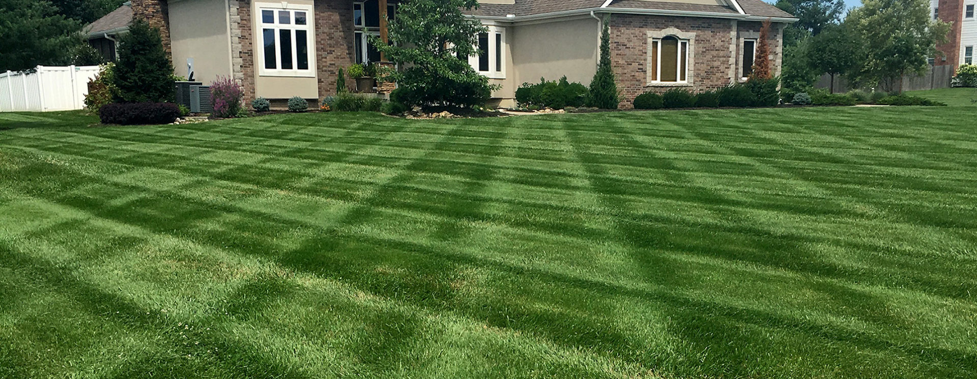 Your Lawn Matters!