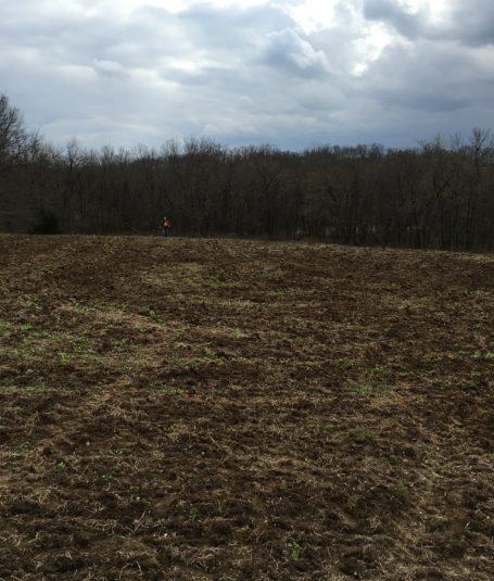 Food Plot & Land Management